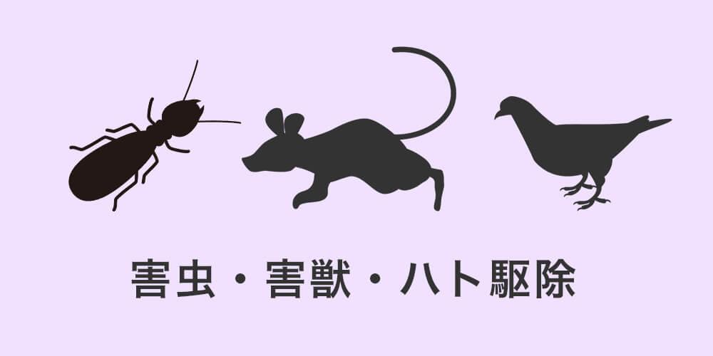 害獣・害虫・ハト駆除