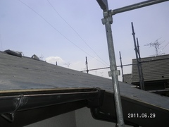 SANY0025web.JPG